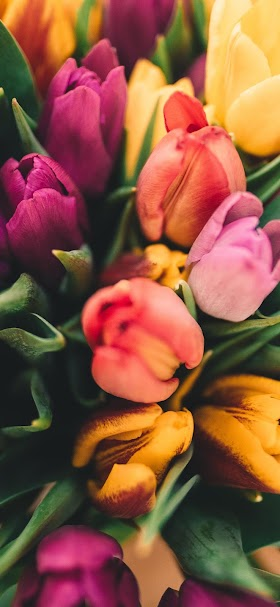 Assorted flowers wallpaper