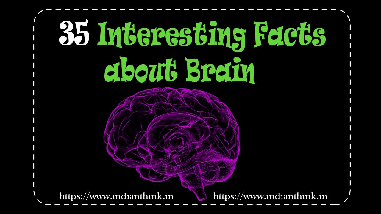 35 Interesting Facts about Human Brain,35 Interesting Facts about Brain,interesting facts about the brain and learning,interesting facts about the brain psychology,facts about the brain for kids,interesting facts about human psychology,human brain facts on memory,intresting facts about human brain