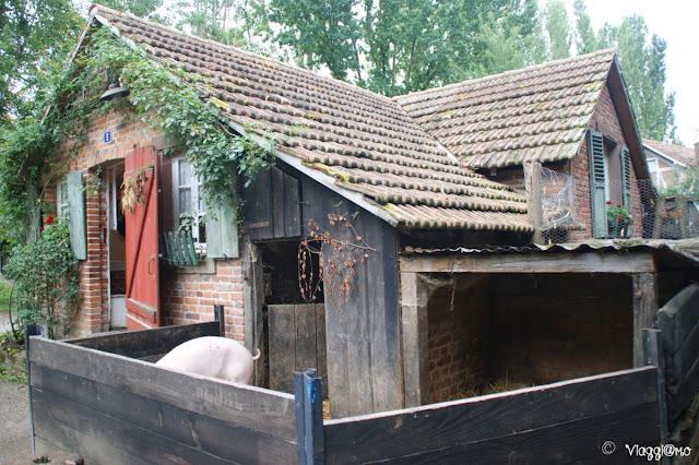 Gli animali nel recinto delle fattorie all'Ecomuseo d'Alsazia