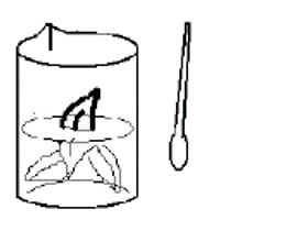 pengambilan sampel mikrobiologi cara bilas atau rinse