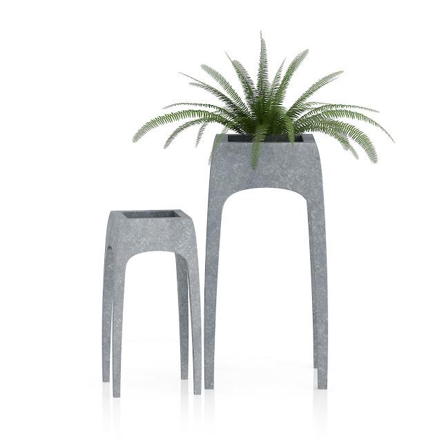 3D model free -  Plants_11
