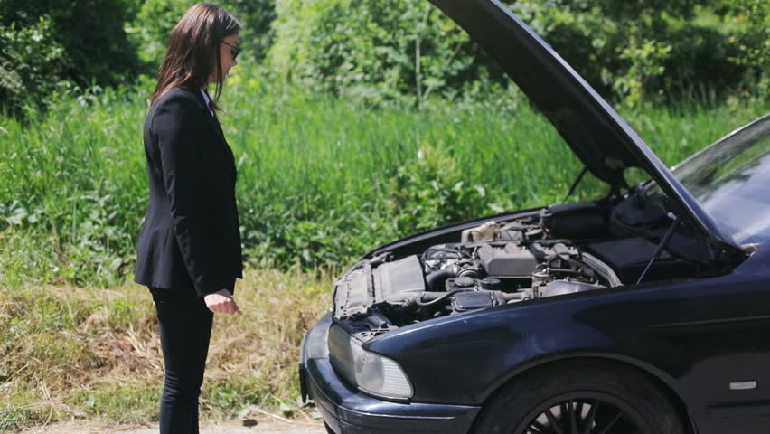lotte 자동차보험