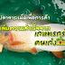 เลี้ยงปลาจาระเม็ดเพื่อการค้า เคล็ดลับความสำเร็จจาก เกษตรกรคนเก่ง