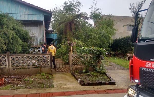 Temporal provoca queda de árvores em Canoinhas