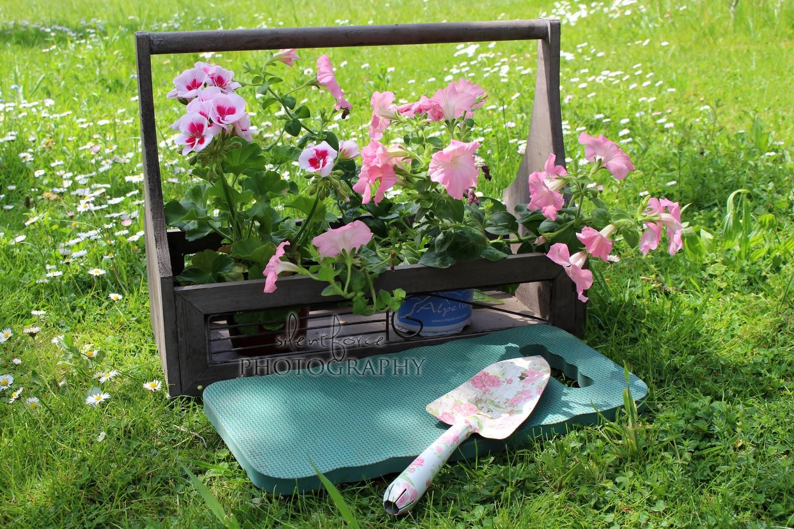 zeit für sommerblumen / silentforce garden