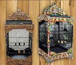 daftar nama & jenis burung kicauan termahal & paling banyak dicari di Indonesia