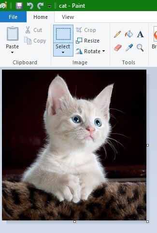 how-to-resize-an-image-in-microsoft-paint