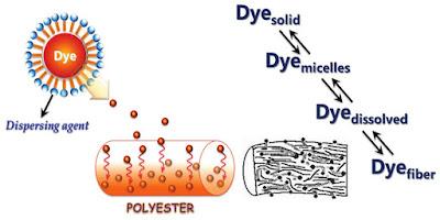 Dyeing Mechanism | Texpedi.com