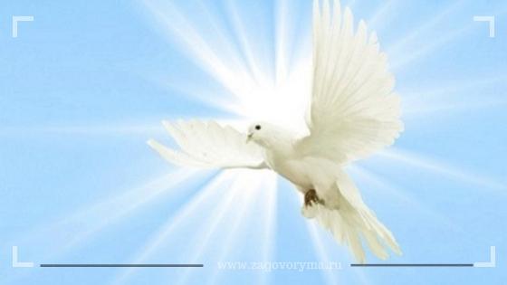Духов день 8 июня: Что можно и чего нельзя делать. Обряды 8 июня 2020 года