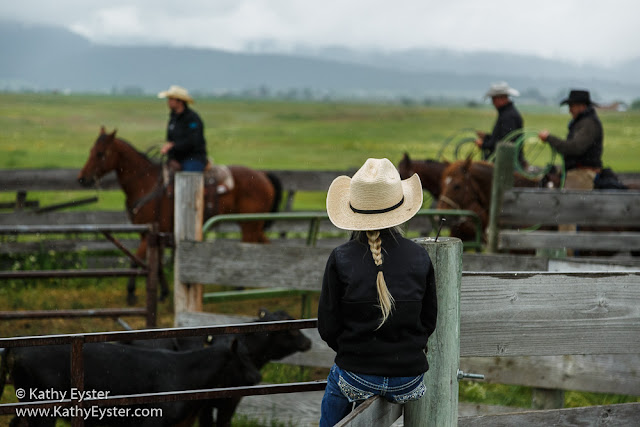 cowgirl watching cowboys