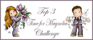 Top 3 Time for Magnolia #113