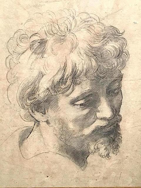 Raphaël /Rafaello Sanzio (1443-1520) Etude de tête