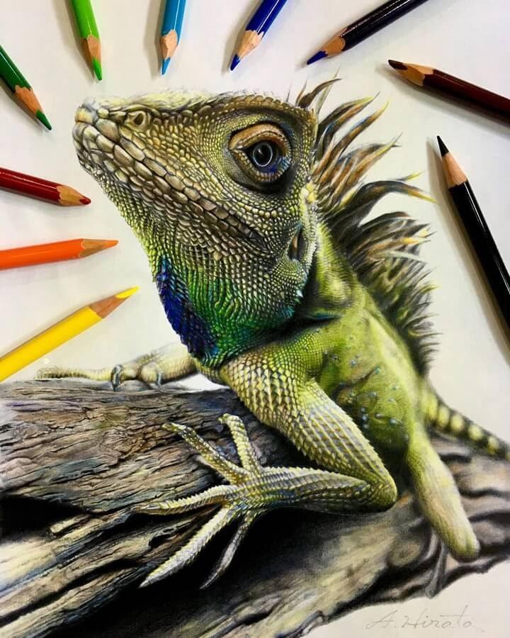 02-Colored-dragon-A-Hirata-www-designstack-co