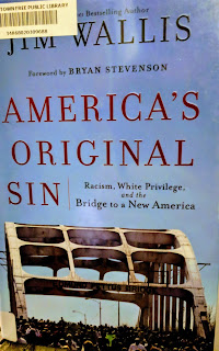 Book Cover - Americas Original Sin