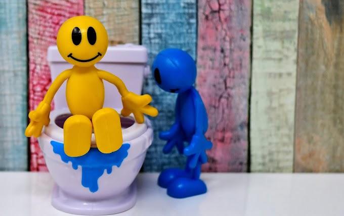 Pengalaman Toilet Training Anak Usia 2 Tahun