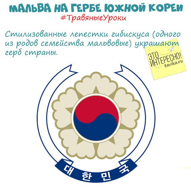 мальва на гербе Южной Кореи