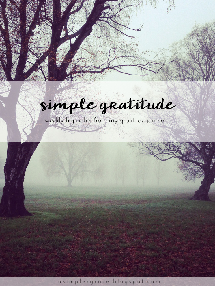 A weekly series focusing on practicing gratitude.  #gratefulheart #gratitude #feelingthankful - Simple Gratitude | 49 - A Simpler Grace