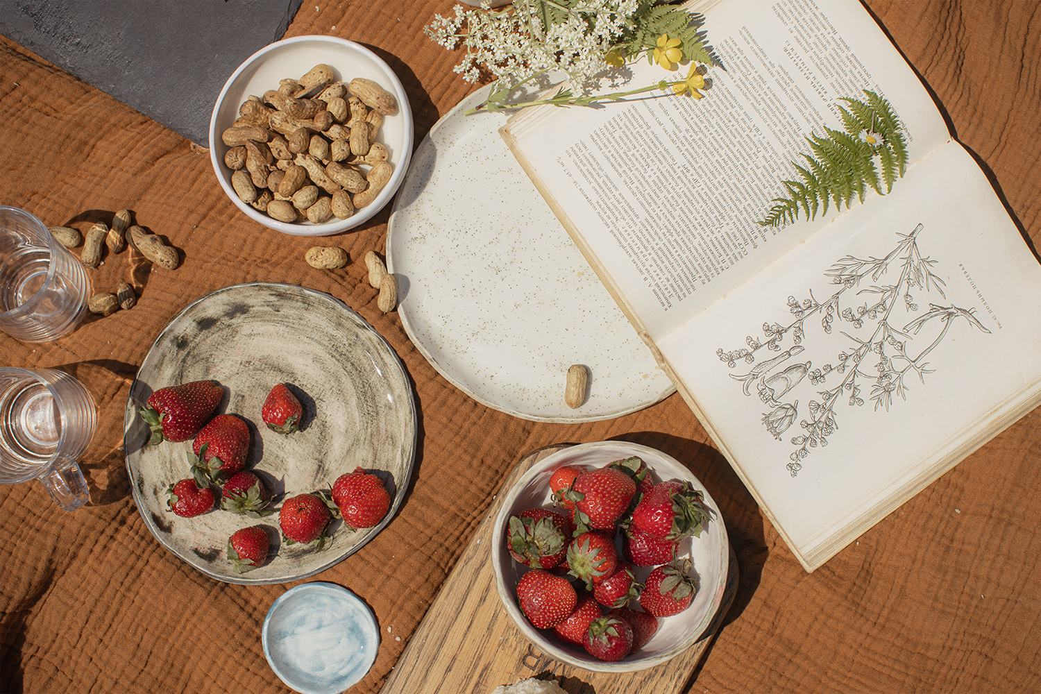 a countryside still life with strawberries, nuts and opened book