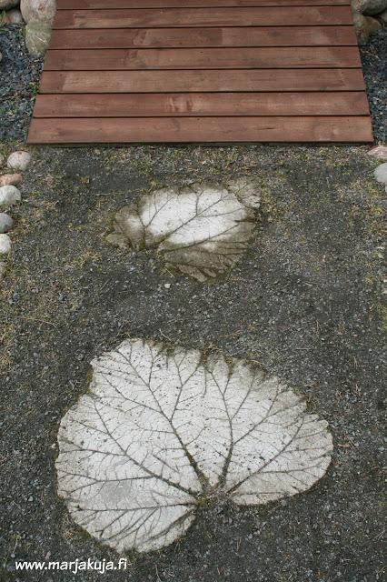betoniset raparperilehdet