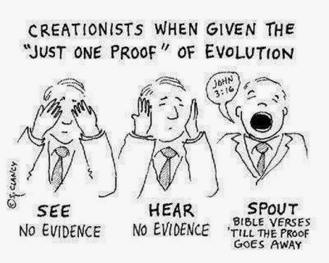 Arguing with the creationists