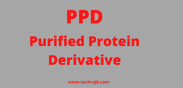 PPD full form, What is the full form of PPD