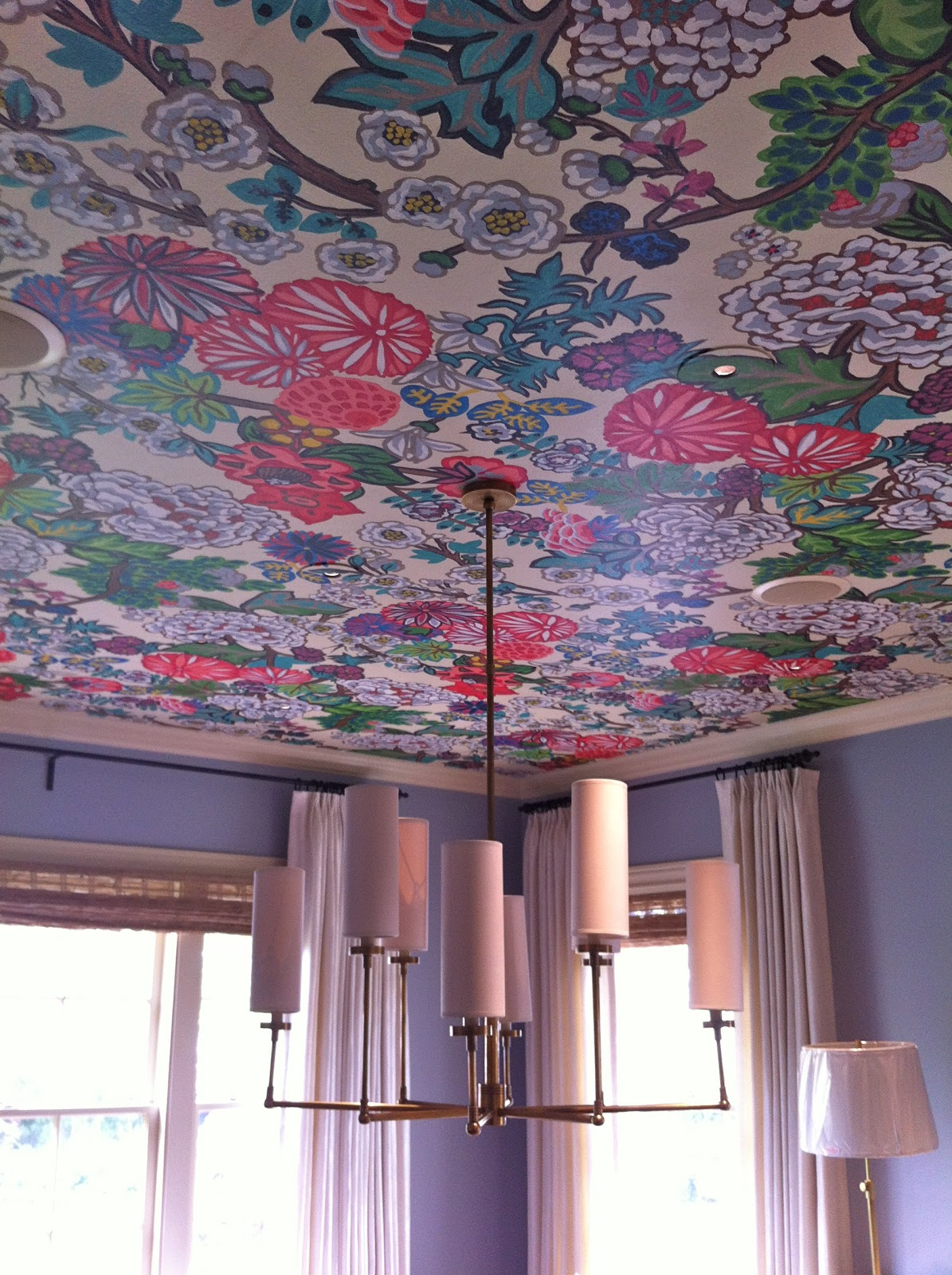 Vivid Hue Home Ceilings Why Put A 'lid' On Them?