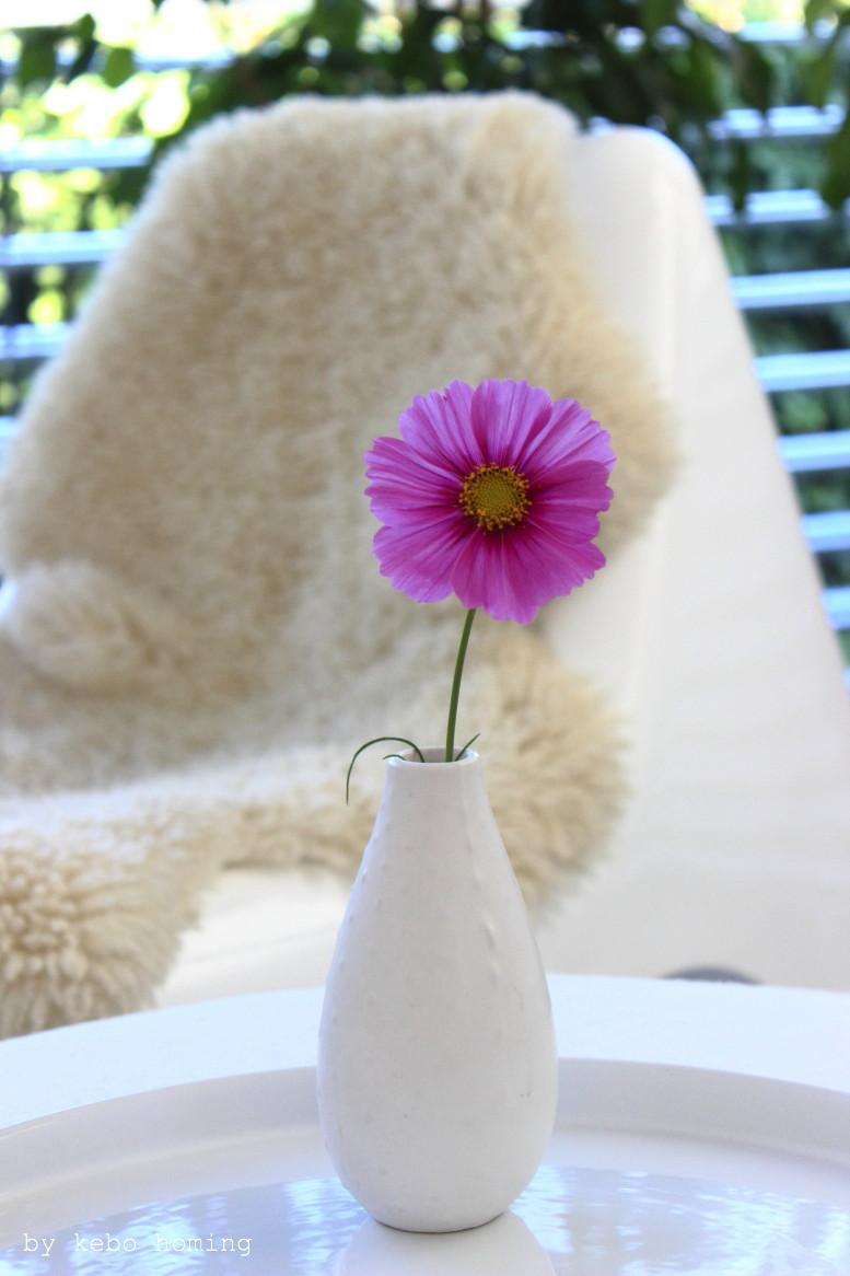 Herbstliche Blumendeko Cosmea Schmuckkörbchen für den Friday Flowerday beim Südtiroler Food- und Lifestyleblog kebo homing