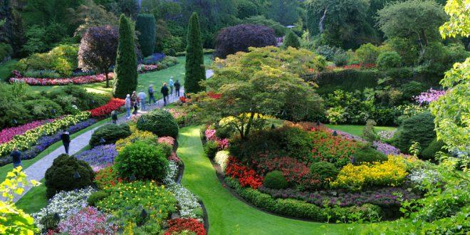 كتابة موضوع تعبير عن الحدائق والزهور وواجبنا نحو الحدائق