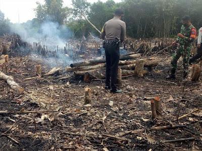 1,4 Hektare Lahan di Desa Sukamaju Disinyalir Sengaja Dibakar