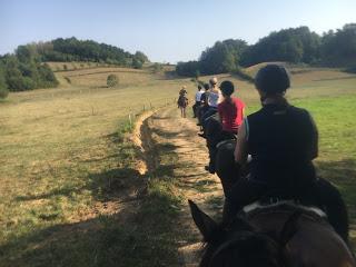 kroatia, ratsastusmatka, riitta reissaa, laukkamaasto, horsexplore