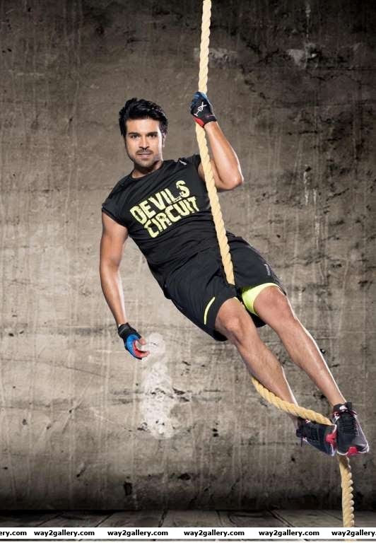 Ram Charan Teja will join hands with Surender Reddy for the Telugu remake of Tamil hit Thani Oruvan