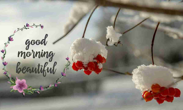 Beautiful first ice good morning wishes