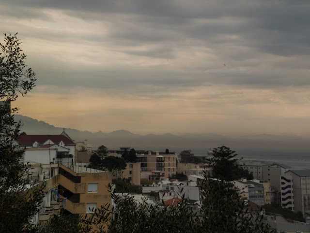 View of trees and apartments on a hazy and hot afternoon in Gibraltar.