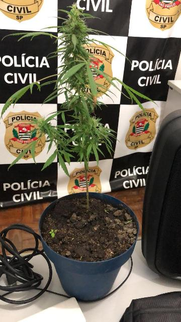 Polícia Civil localiza e apreende diversos objetos furtados e substâncias entorpecentes em Cananéia