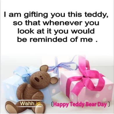Happy Teddy Bear Day Messages for Girlfriends In Hindi