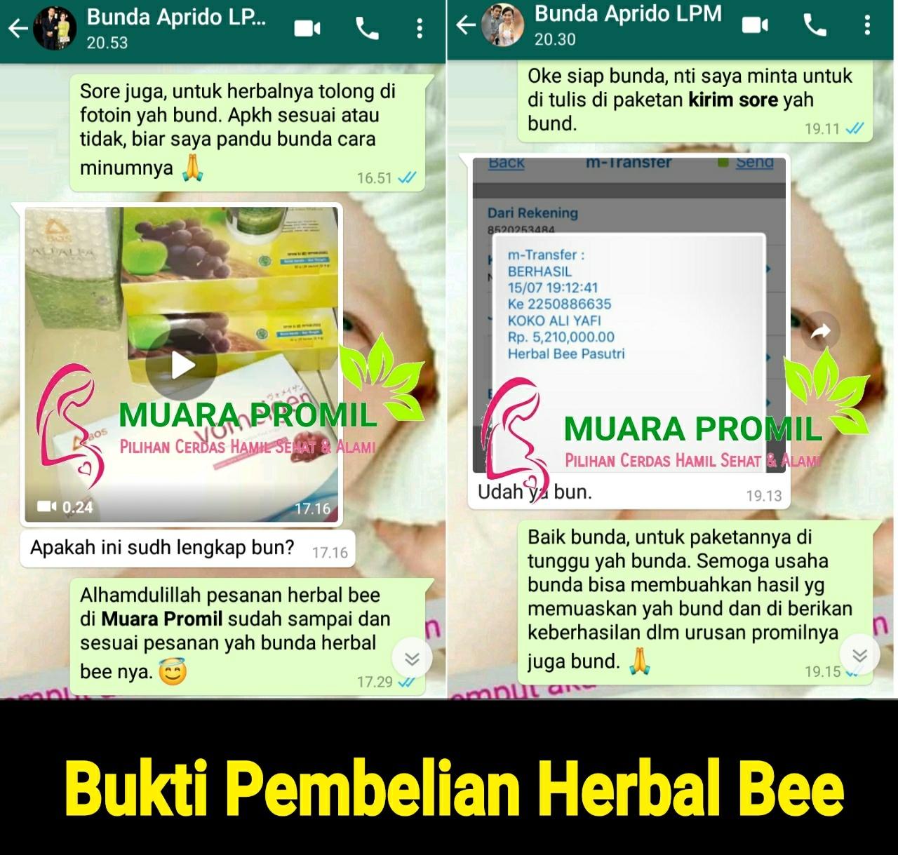 Bukti Penjualan Herbal Bee di Sulawesi Tenggara