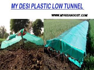 Plastic Low Tunnel