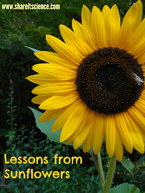 http://www.shareitscience.com/2015/09/glimpse-of-garden-week-24-lessons-from.html