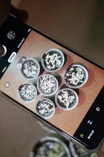 oreo cake, phonephotography, flatlay
