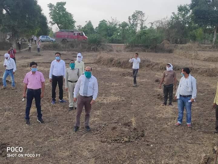 सिवनी : टिड्डी दल को भगाने में लगा राजस्व एवं कृषि विभाग / Seoni News