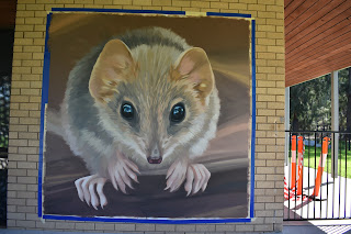 Street Art in Thurgoona by Tracie MacVean