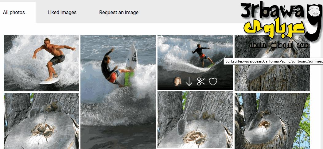 موقع لتحميل اكثر من 350 ألف صورة عالية الدقة مجانآ over 350,000 free stock photos