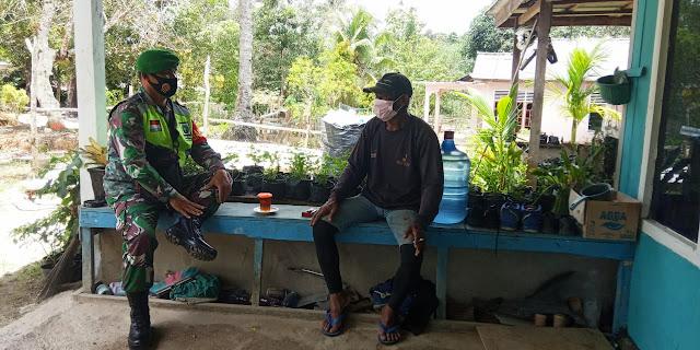 Warga Desa Tapau Mulai Mengembangkan Tanaman Karet