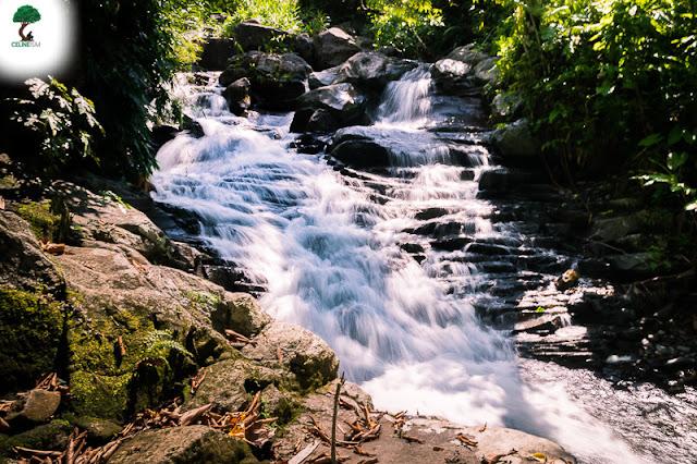 falls in albay