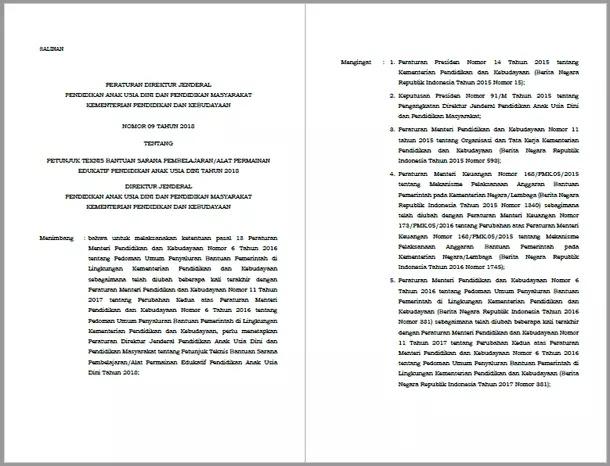Juknis Bantuan Sarana Pembelajaran APE (Alat Permainan Edukatif) PAUD Tahun 2018