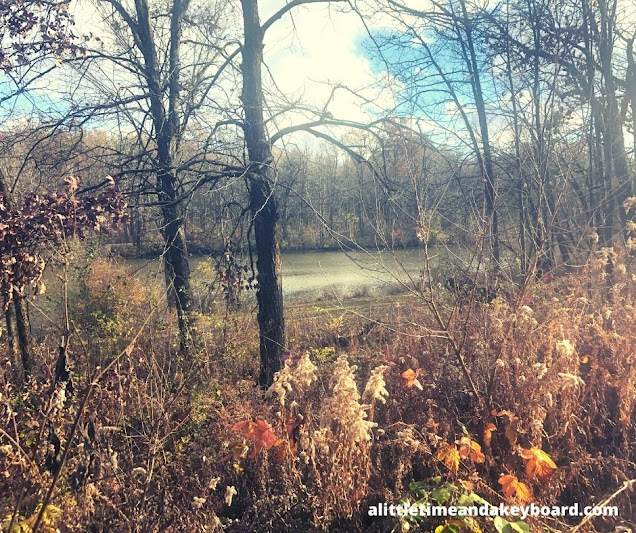 Rusty fall hues warm the scene surrounding the peaceful pond at Goodenow Grove Nature Preserve.