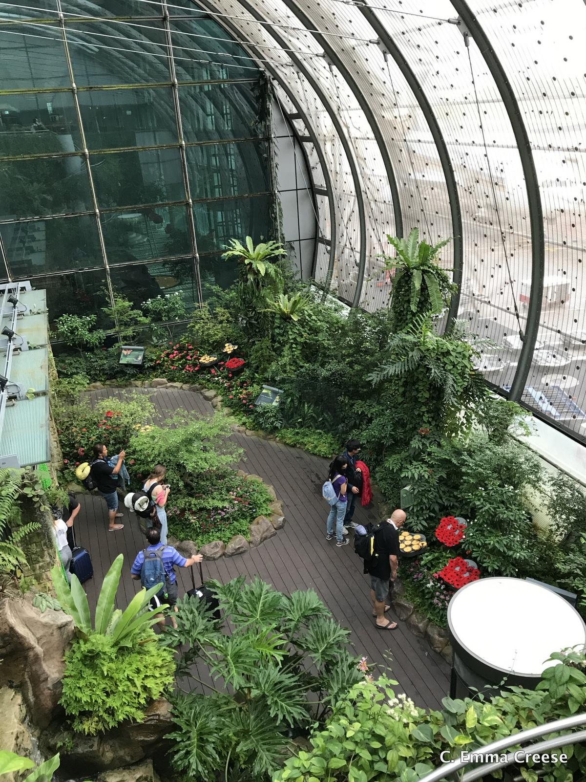 My travel journey – beginning in Singapore #travellinkup