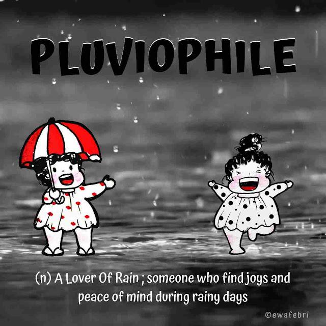 Apa sih Pluviophile ?