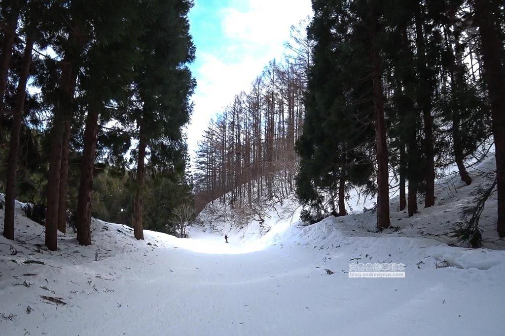 日本福島滑雪,豬苗代滑雪場,猪苗代スキー場,適合新手滑雪場