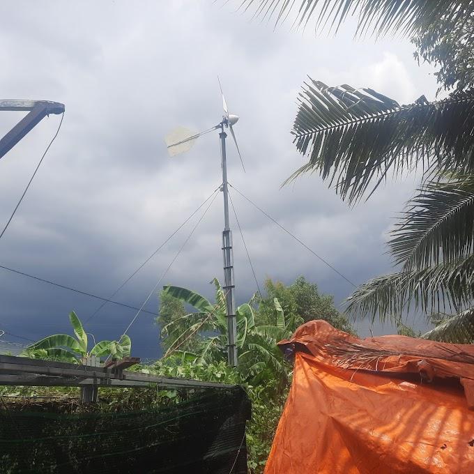Máy phát điện gió: Những dự án mini và hình ảnh thực làm cho khách.